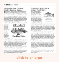Example of News Brief