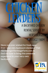 hershberger chicken lenders