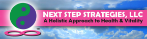 next step strategies llc