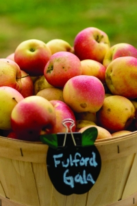 WFM_apples