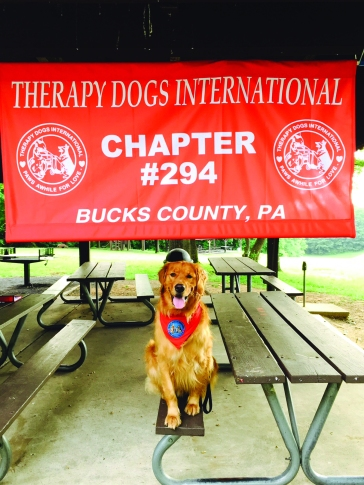 TherapyDogsInternational-1_0417