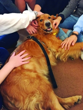 TherapyDogsInternational-6_0417