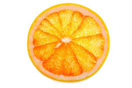 OrangeLemonSlice_141994664_l