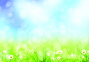 BackgroundDaisiesSpringMeadow_16725343_l.jpg