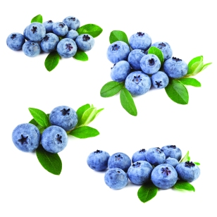 HB_Blueberries_24575403_l.jpg